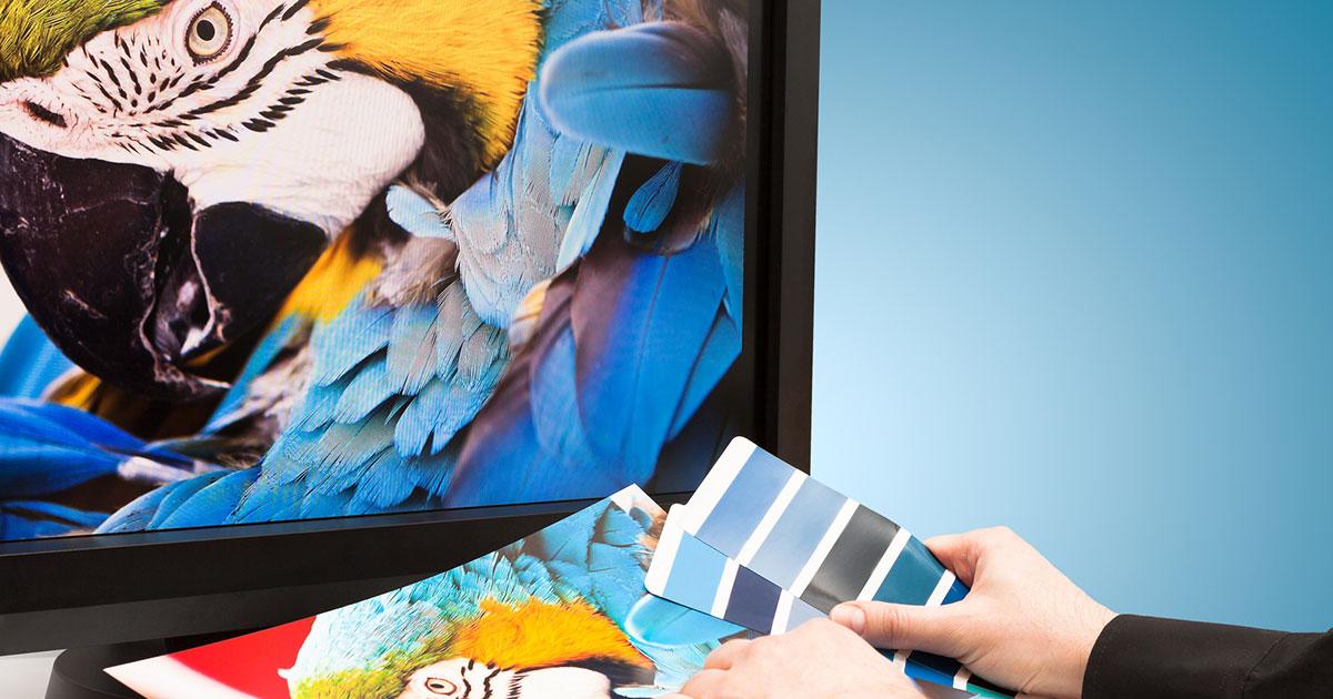 Pantone color matching printed artwork
