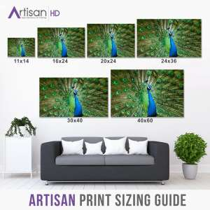 Frequently Asked Printing Questions Size Guide for HD Photograph