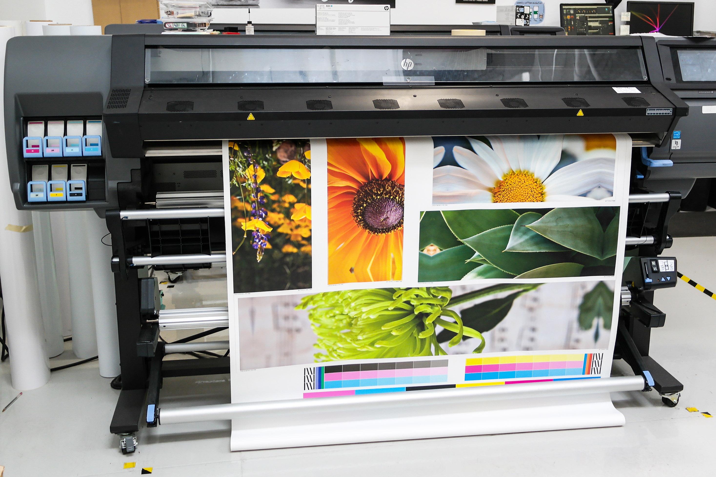 high resolution high quality photo printing flowers