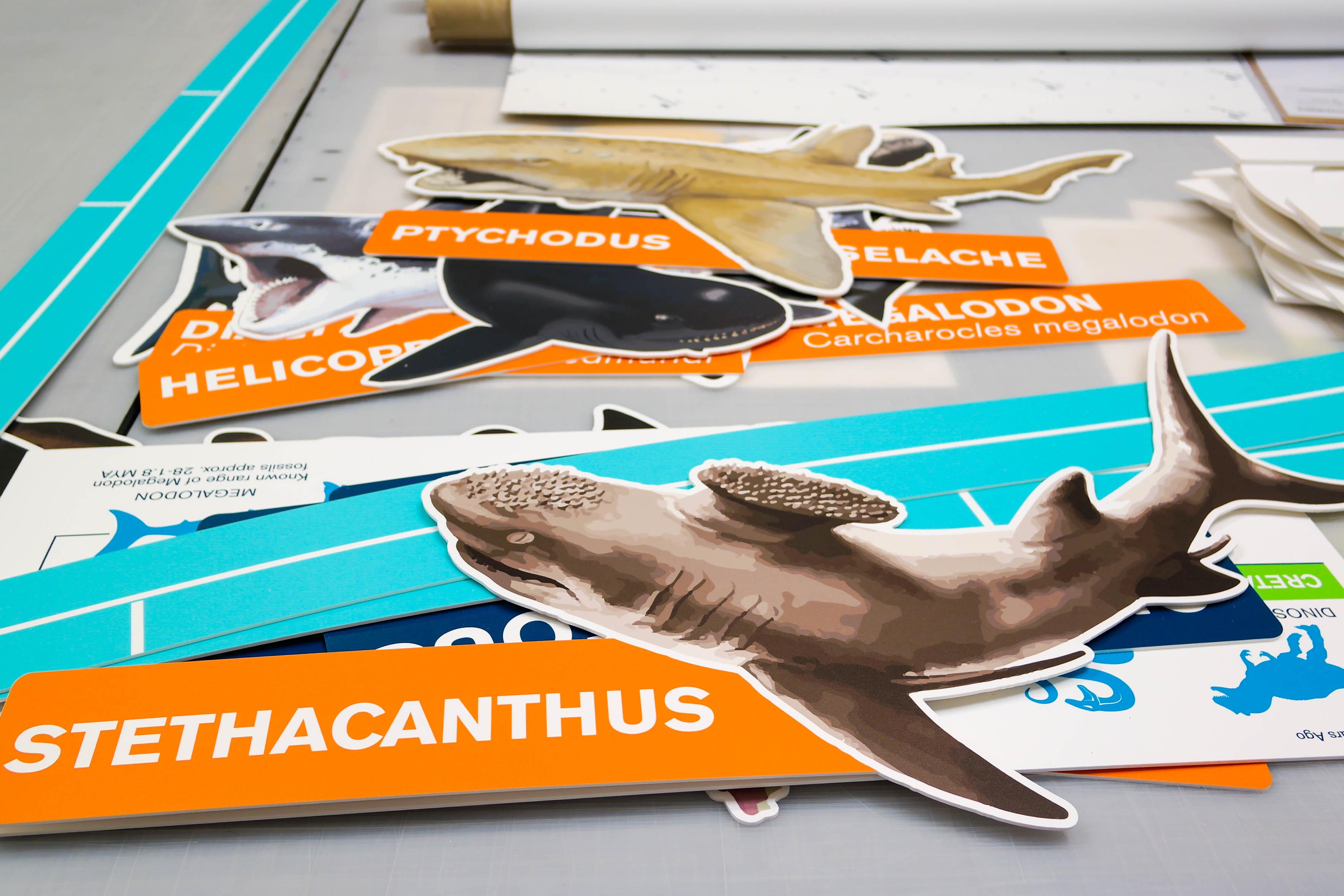 custom event signage sharks