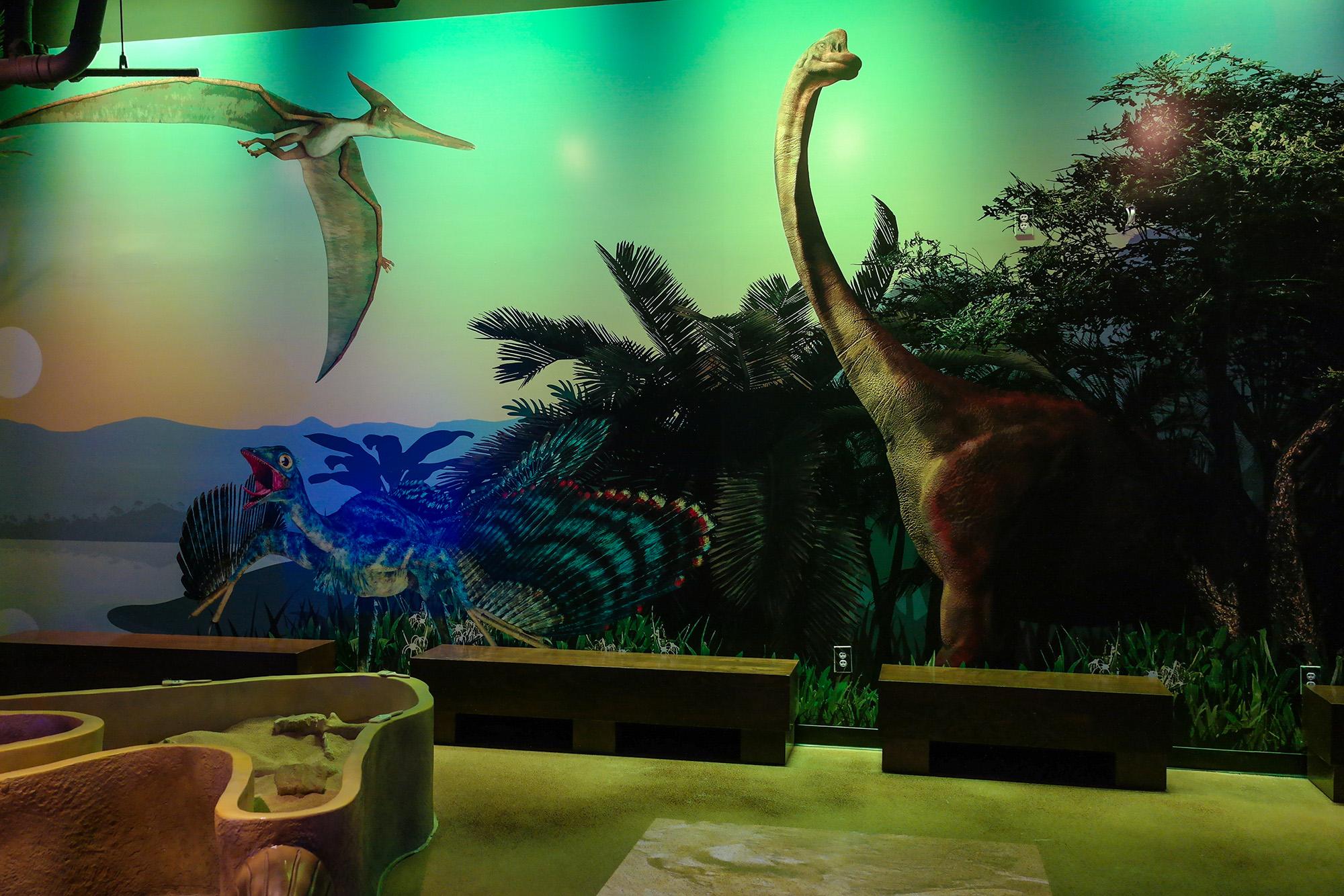 custom wall graphics dinosaurs graphic