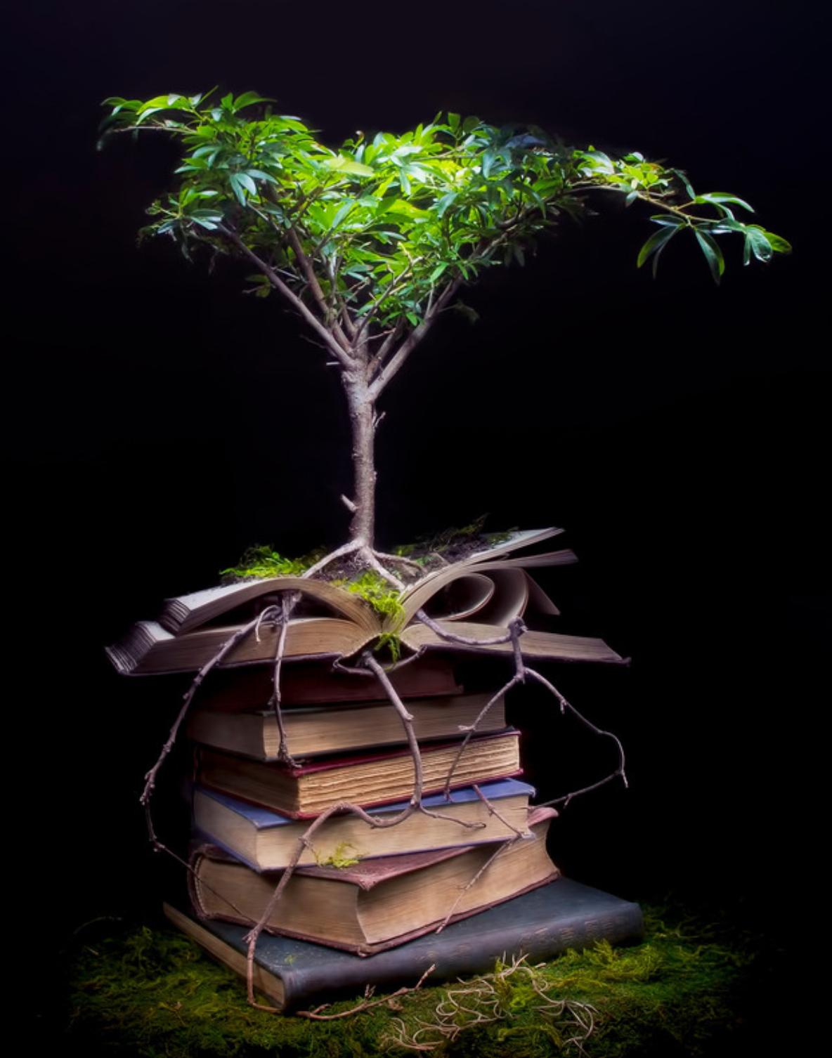custom print decor green tree artboja