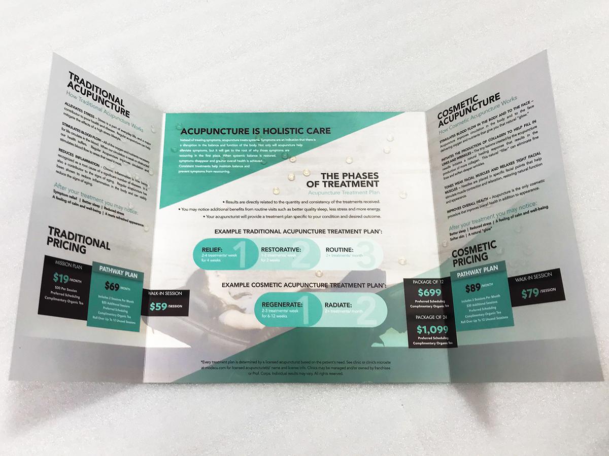 Modern Acupuncture Door Brochure Inside
