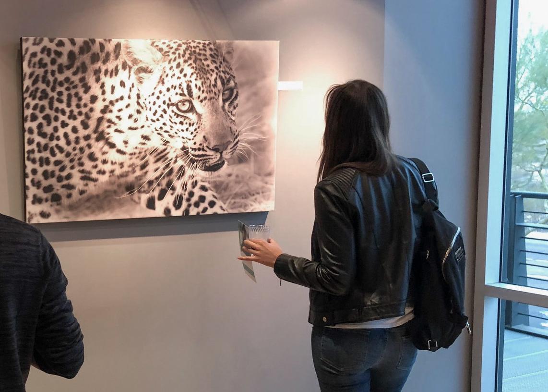 Asha Leopard