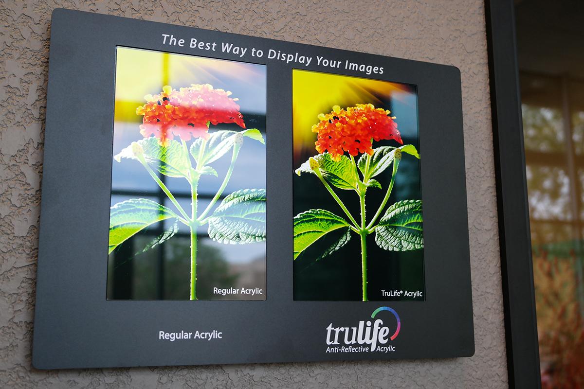 trulife acrylic wall example