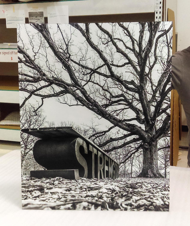 Custom Trulife Acrylic Print 3 Small