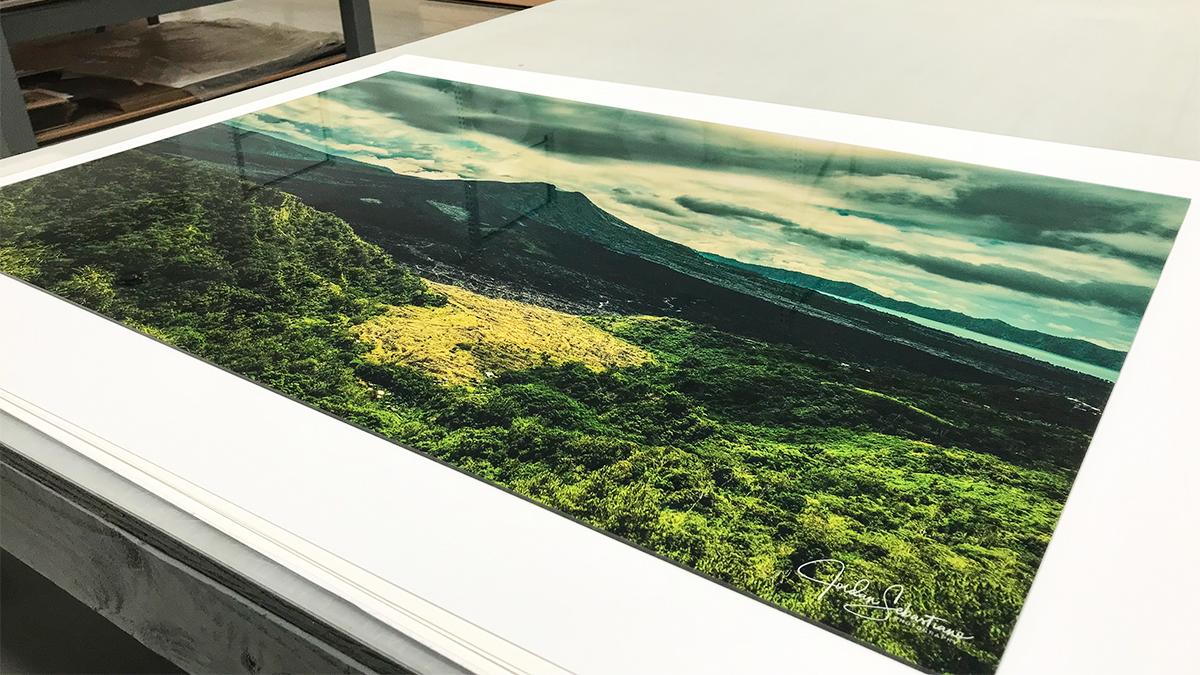 green nature photos acrylic print artisanhd