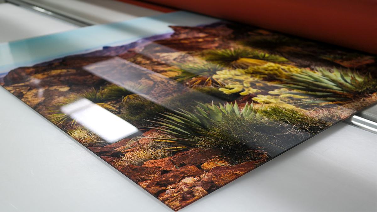 printed nature photos desert landsca
