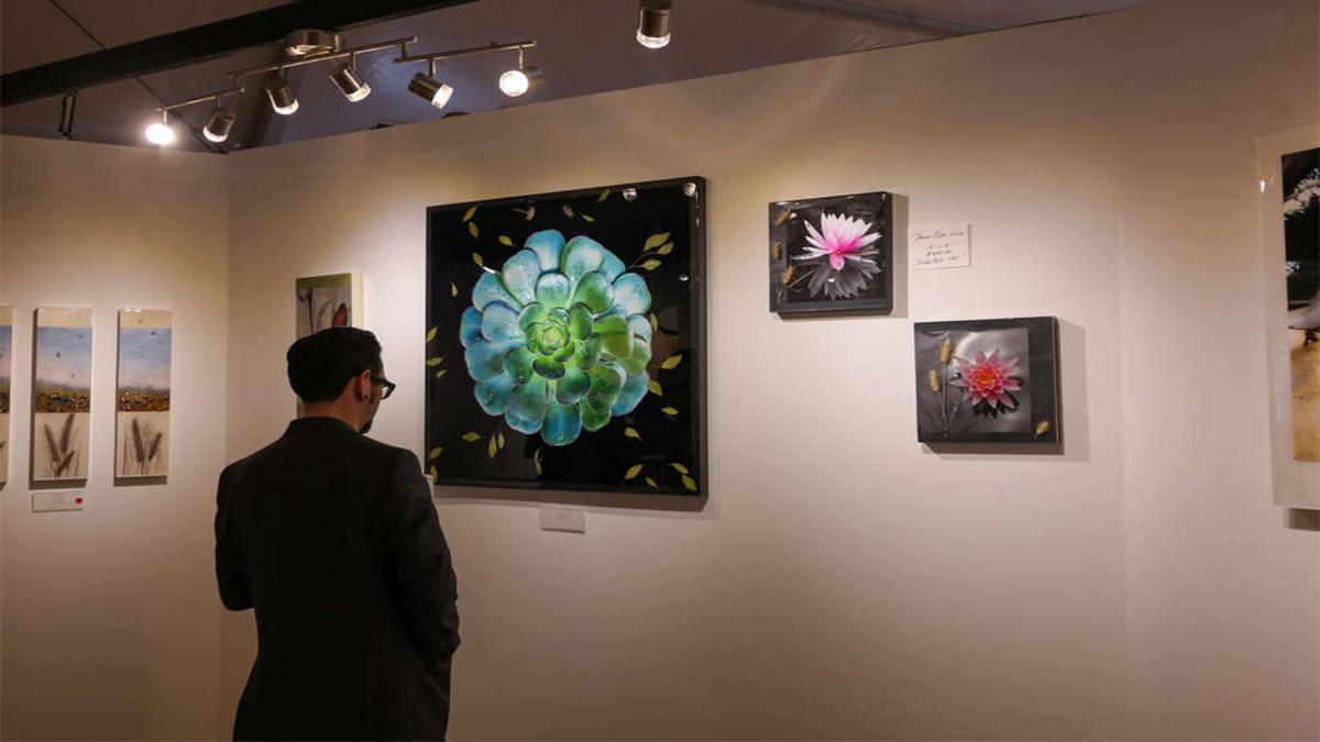 artisanhd client emily randolph fine art gallery art festival