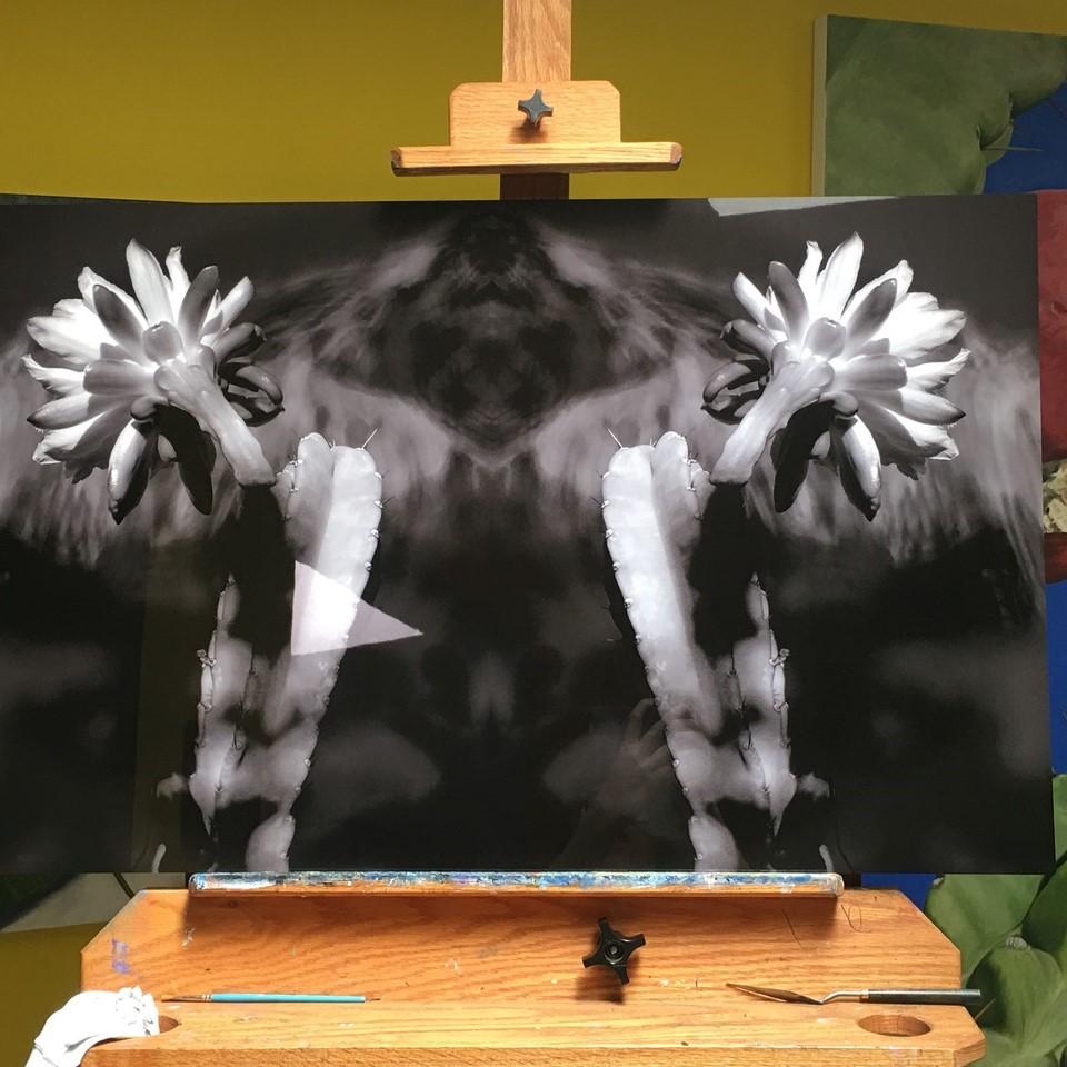 Daniel Prendergast HD Metal Prints for art gallery showing