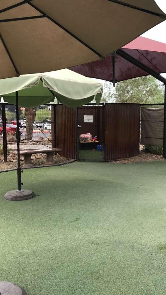 Foothills Animal Rescue Exterior Playground Upgrades