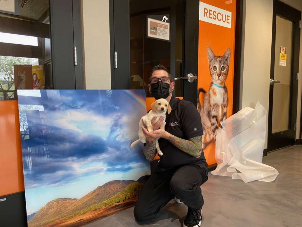 Mike from ArtisanHD delivering acrylic art prints for donation to Foothills Animal Rescue holding puppy for adoption