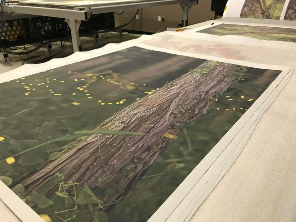 HD photo paper fine art print in progress