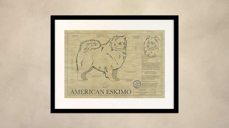 WALL IMAGE AMERICAN ESKIMO DRAWING 1024x574 1