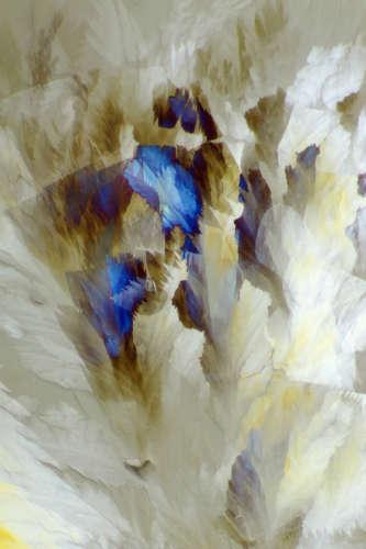 Bouquet image by L Hendrickson